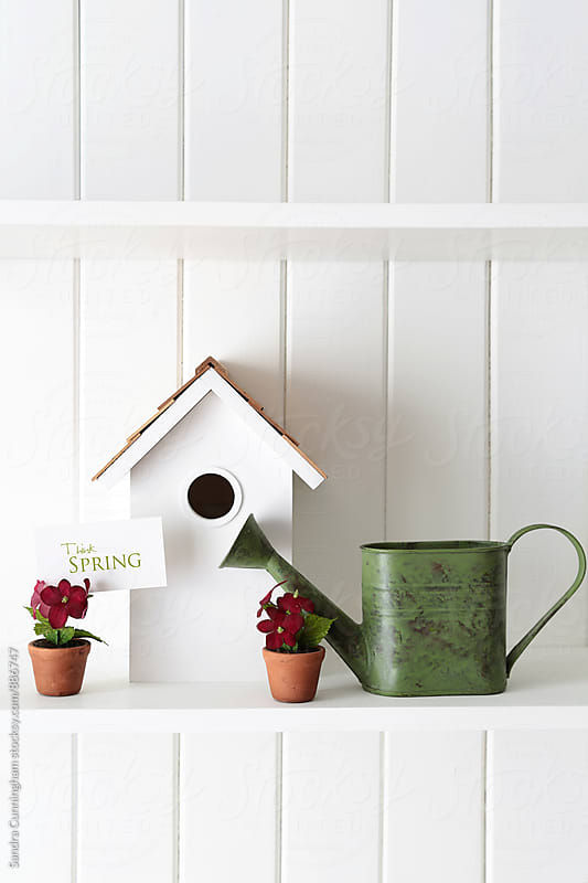 Birdhouse with flowers and watering can on shelf by Sandra Cunningham for Stocksy United
