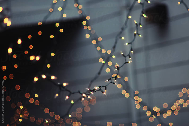 Twinkle lights by Chelsea Victoria for Stocksy United