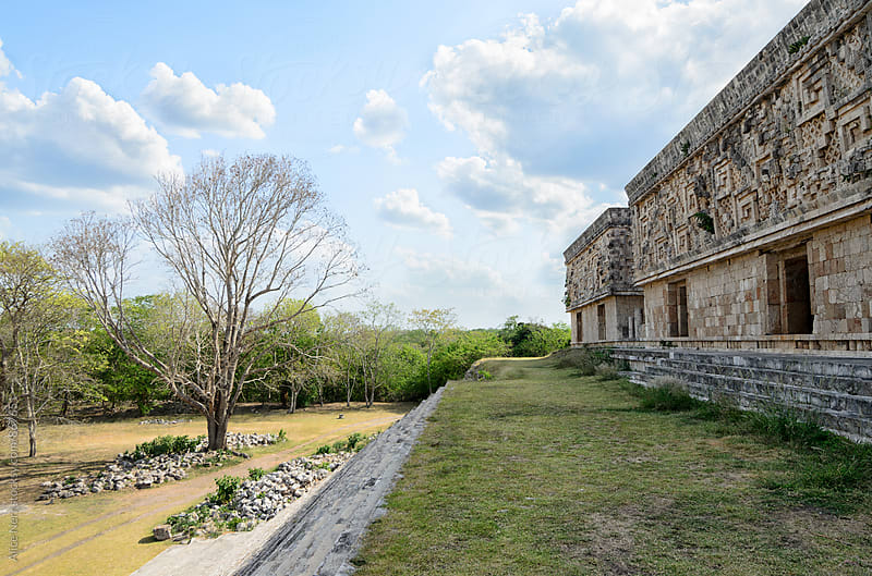 View to ruins of Uxmal  pyramids by Alice Nerr for Stocksy United