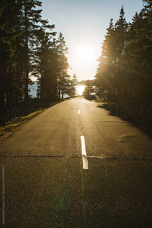 Coastal Road in  Acadia National Park by Raymond Forbes LLC for Stocksy United