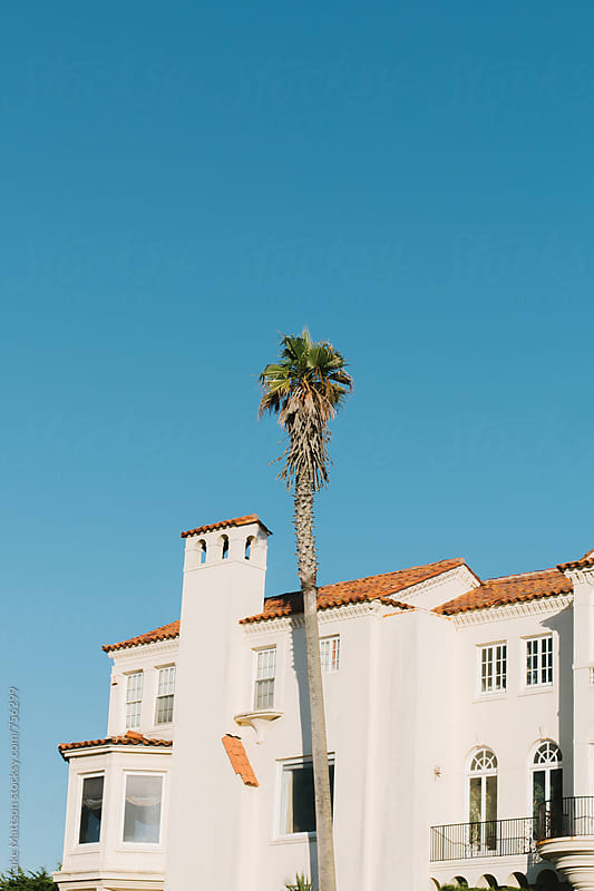 Palm Tree In Front Of Mission Style Mansion In San Francisco by Luke Mattson for Stocksy United