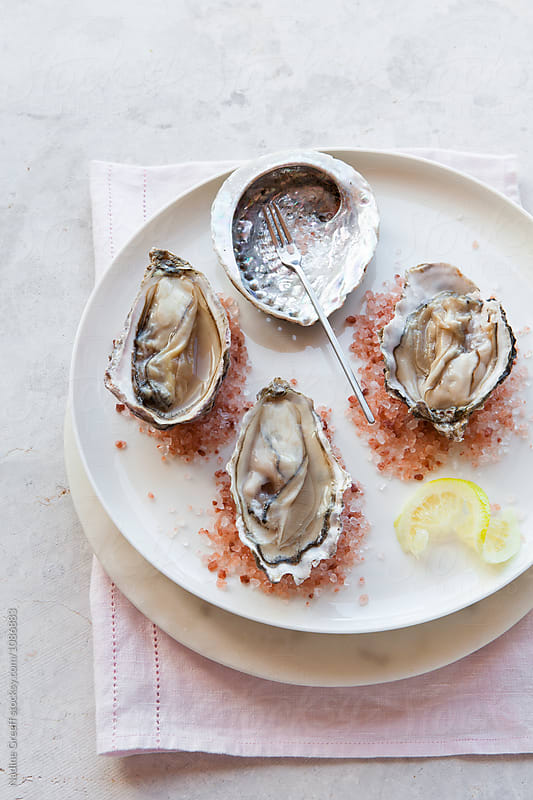 Half shell oysters on pink salt by Nadine Greeff for Stocksy United
