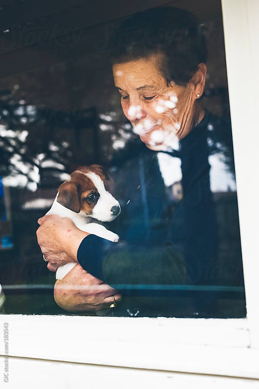 Senior woman holding a puppy at window by GIC for Stocksy United