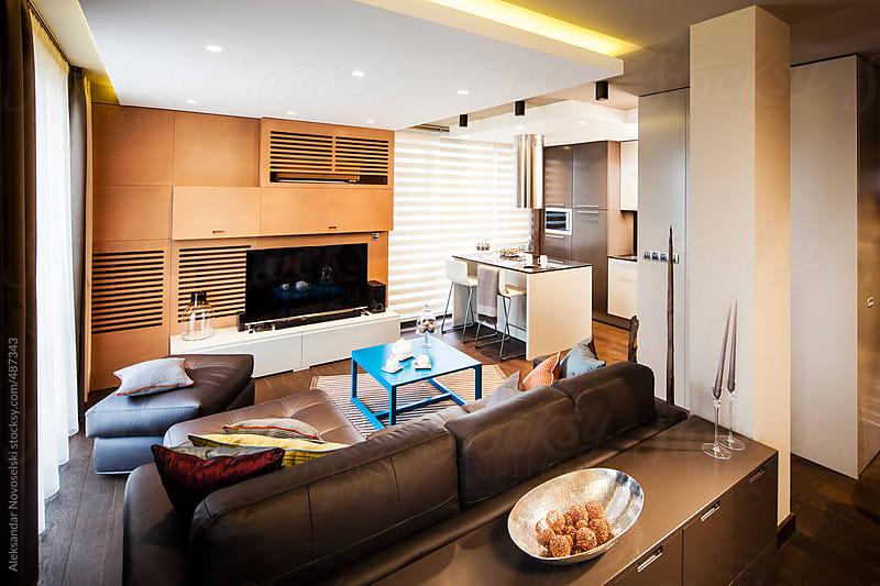 Contemporary living room by Aleksandar Novoselski for Stocksy United