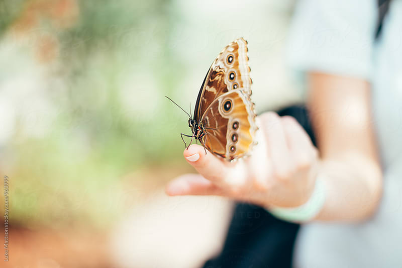Brown Butterfly Resting On Fingertip Of Young Blonde Woman by Luke Mattson for Stocksy United