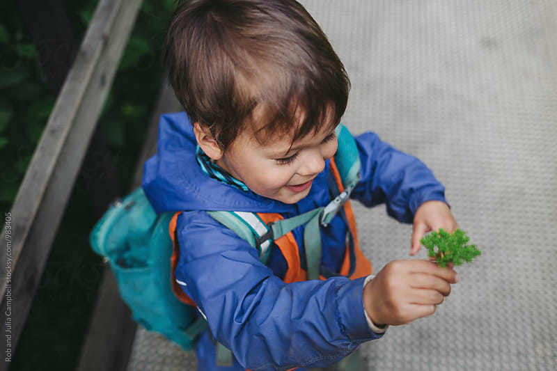 Young caucasian boy discovering plantsa at nature preschool by Rob and Julia Campbell for Stocksy United