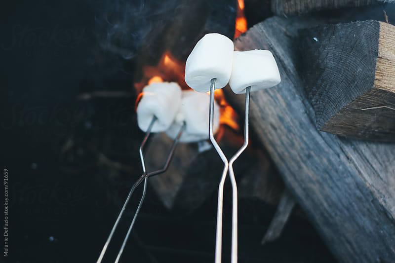 Roasting Marshmallows by Melanie DeFazio for Stocksy United