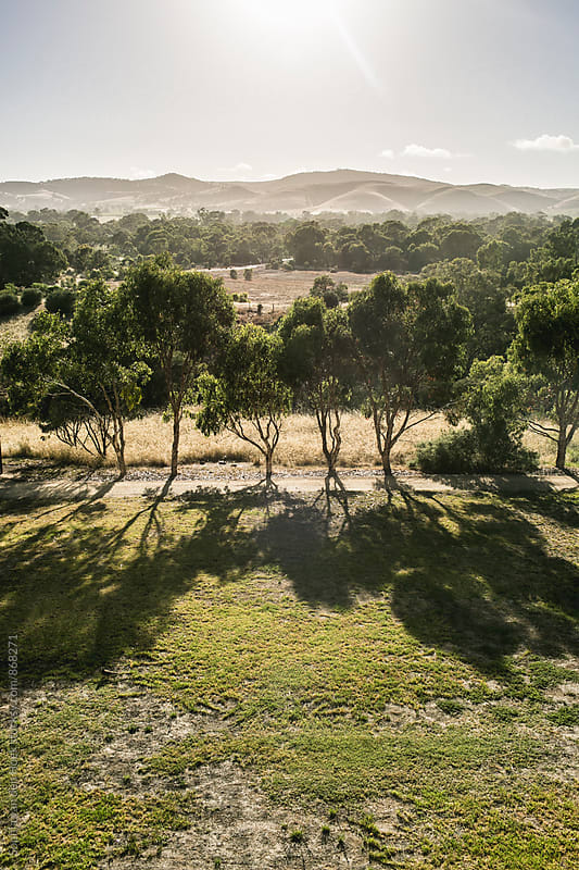 View over Barossa Valley by Sophia van den Hoek for Stocksy United