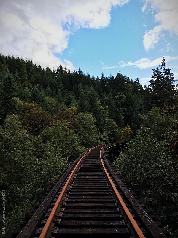 Train Track Bridge in Treetops by B. Harvey for Stocksy United