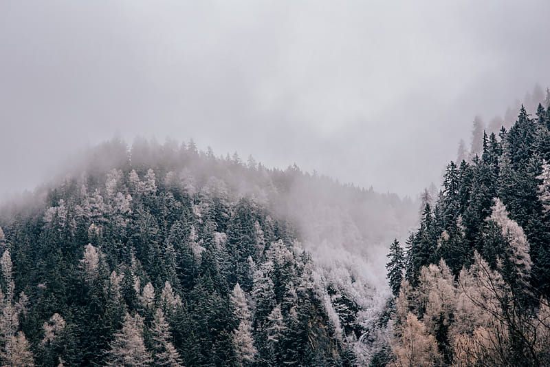 Snow clouds bring a a first snow fall to the mountain slopes in Austria. by Soren Egeberg for Stocksy United
