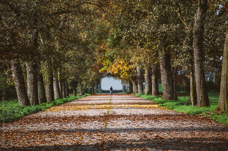 A man walking in the park, in autumn. by michela ravasio for Stocksy United