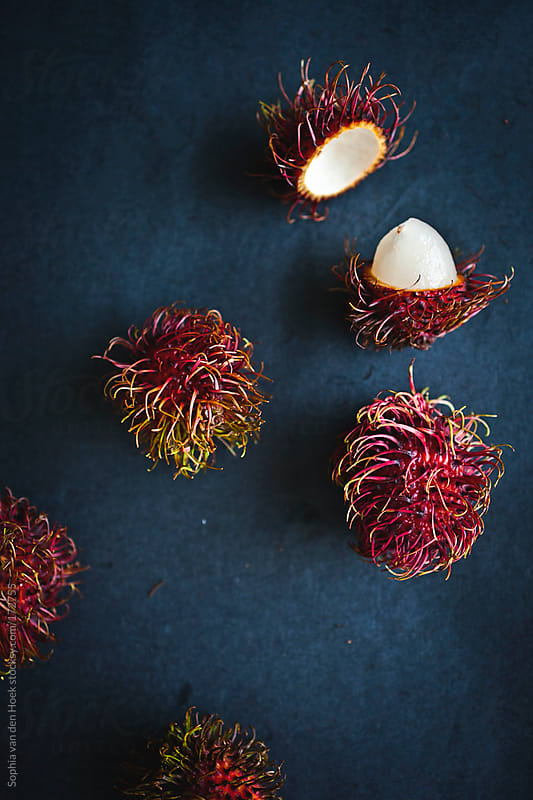 Rambutan by Sophia van den Hoek for Stocksy United