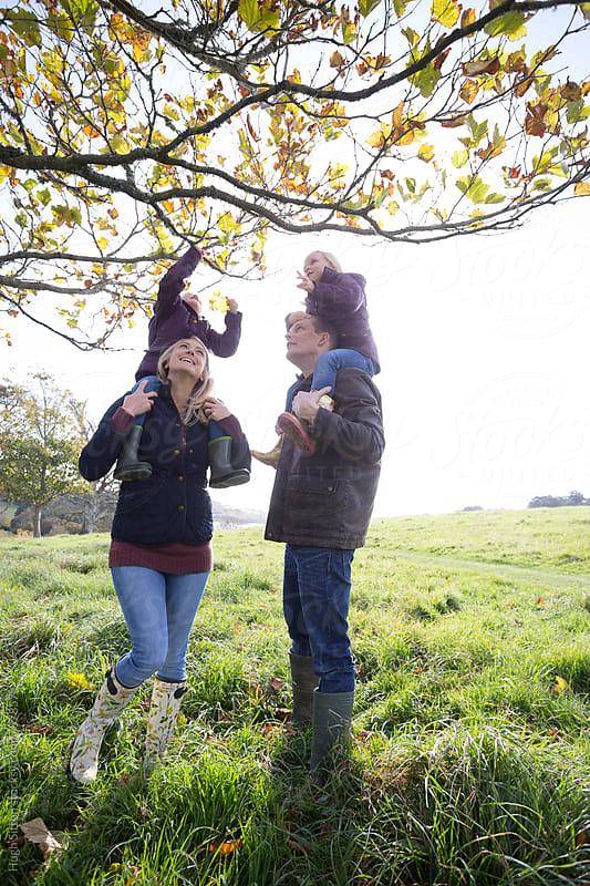Family on autumn walk. by Hugh Sitton for Stocksy United