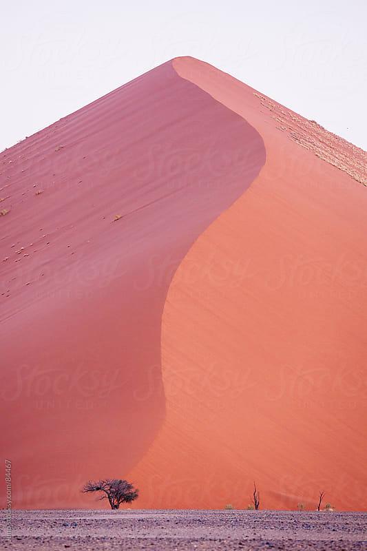 Giant Sossusvlei desert sand dune, Namibia by Micky Wiswedel for Stocksy United