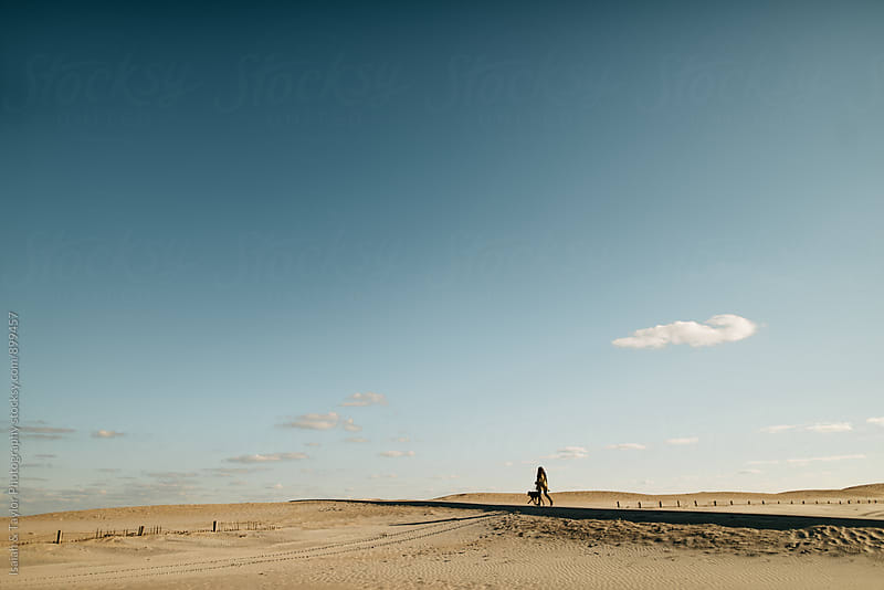 Person and dog walking on beach boardwalk by Isaiah & Taylor Photography for Stocksy United