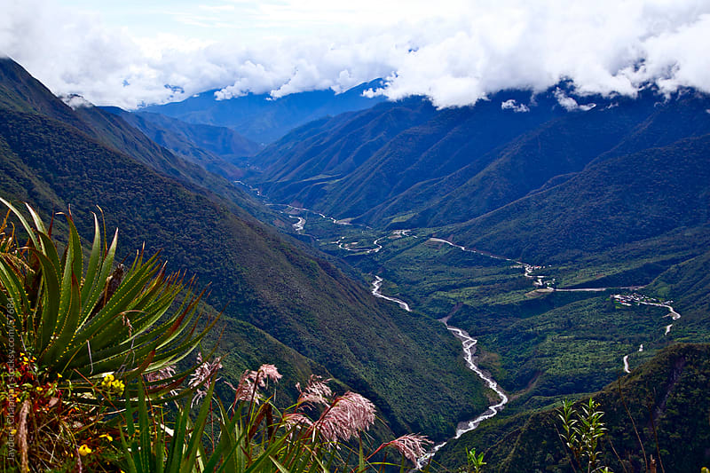 A picturesque view of a lush green valley, low cloud and a long winding road, Peru by Jaydene Chapman for Stocksy United