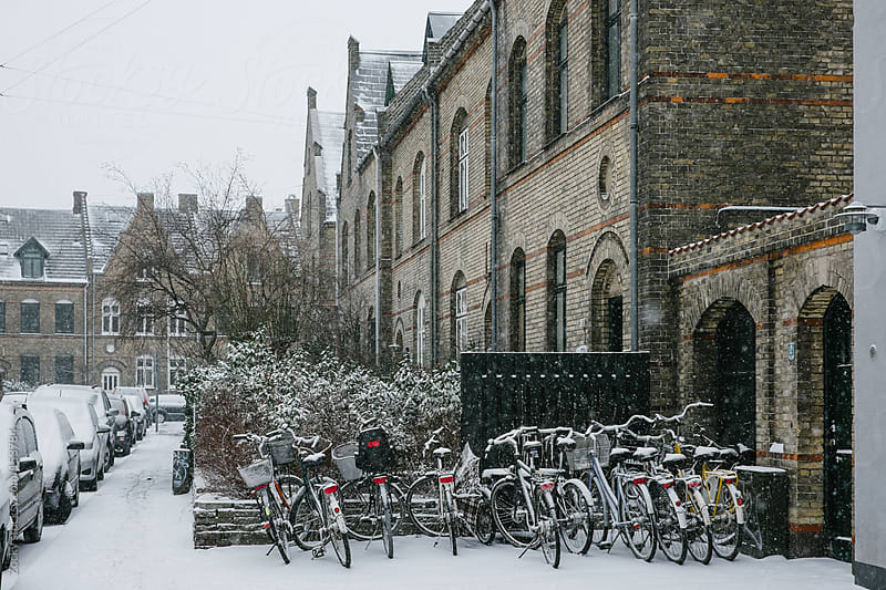 Suburban snowstorm scene by Zocky for Stocksy United