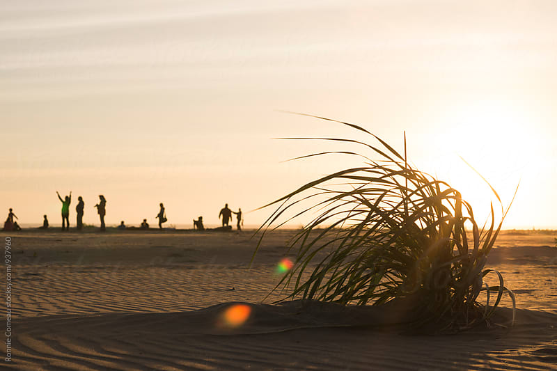 People Enjoying The Beach At Sunset by Ronnie Comeau for Stocksy United