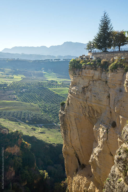 Trees on the edge of a cliff in Ronda by ACALU Studio for Stocksy United