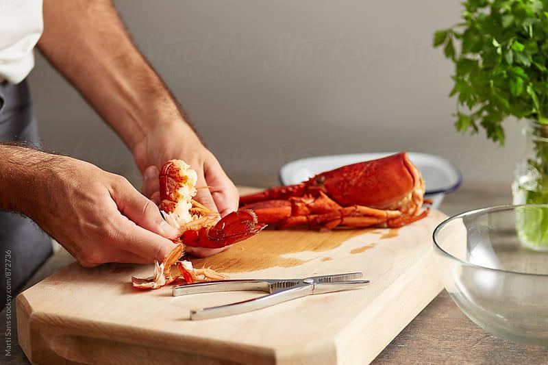 Chef's hands preparing lobster by Martí Sans for Stocksy United
