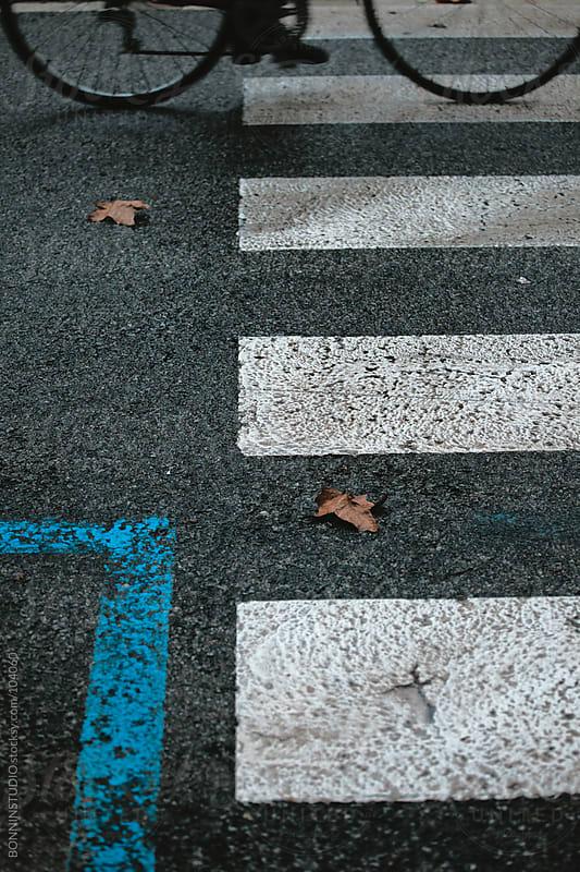 Bicycle on crosswalk. Autumn. by BONNINSTUDIO for Stocksy United