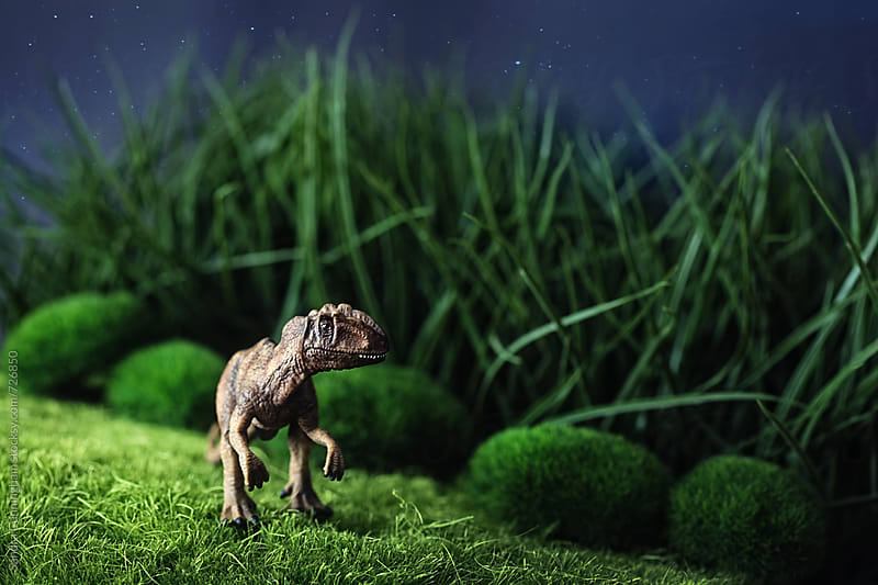 Toy dinosaur on grass at night by Sandra Cunningham for Stocksy United