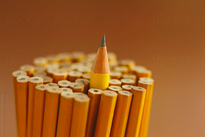 One sharpened pencil stands out from the many other unsharpened  by David Smart for Stocksy United