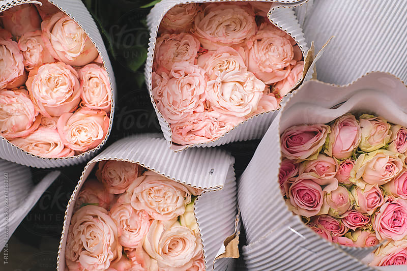 Fresh pink and white-pink roses in cardboard by Danil Nevsky for Stocksy United