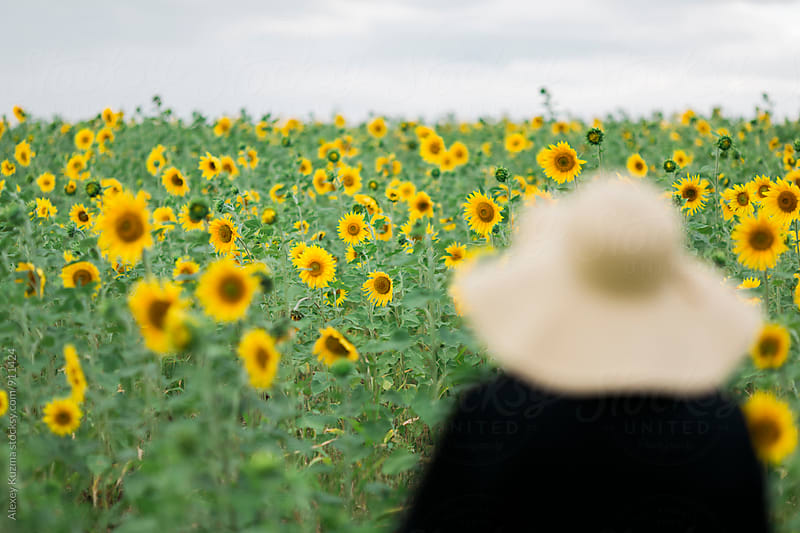 woman with summer hat looking on sunflowes by Alexey Kuzma for Stocksy United