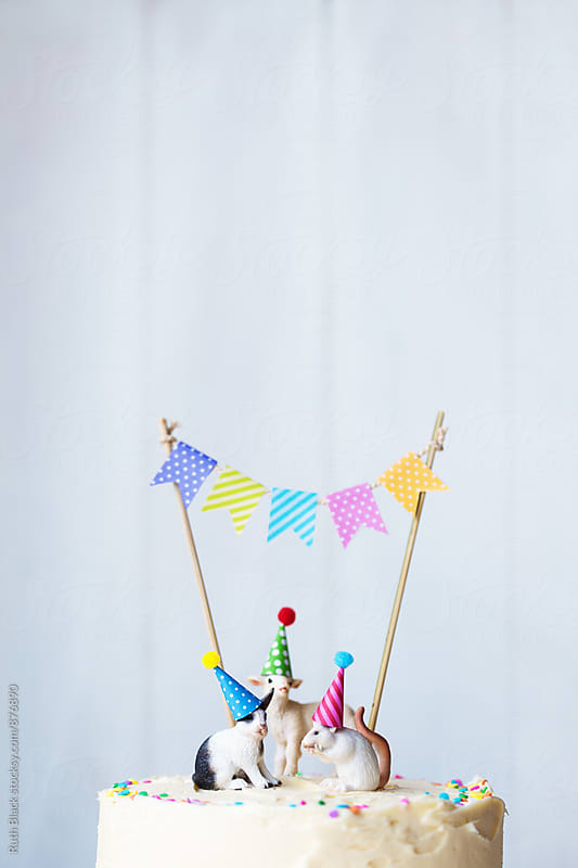 Birthday cake by Ruth Black for Stocksy United