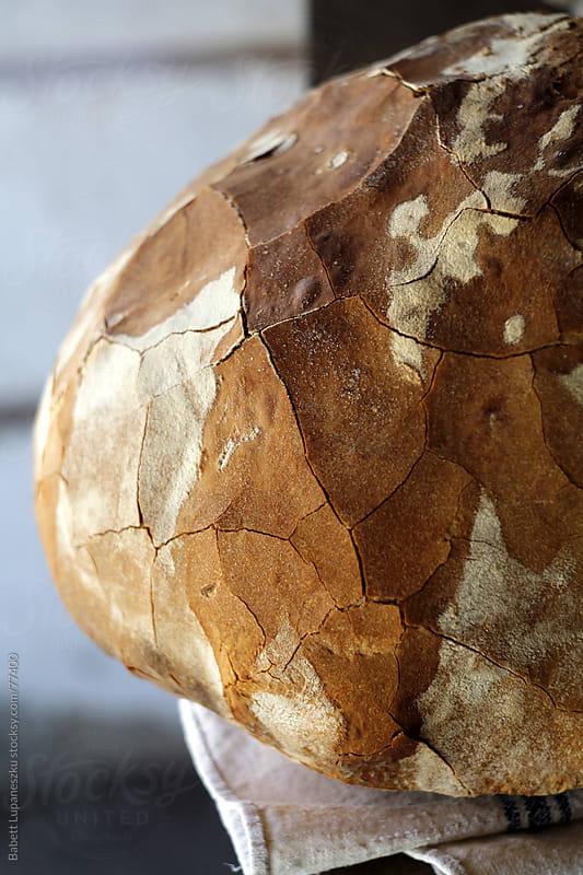 Rustic bread by Babett Lupaneszku for Stocksy United