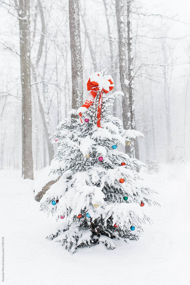 30ae624eb2d Snow-covered outdoor Christmas tree decorated with colorful ornament bulbs  and a big red bow