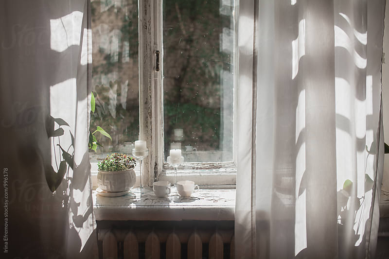 Morning tea by Irina Efremova for Stocksy United