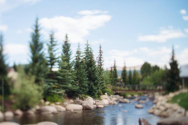 Blue River Breckenridge Colorado in summer by Angela Lumsden for Stocksy United