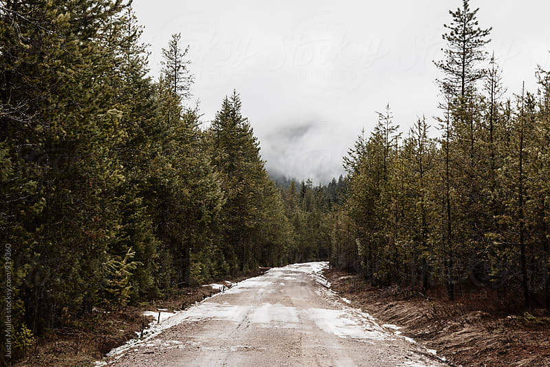 Dirt road covered in melting snow. by Justin Mullet for Stocksy United