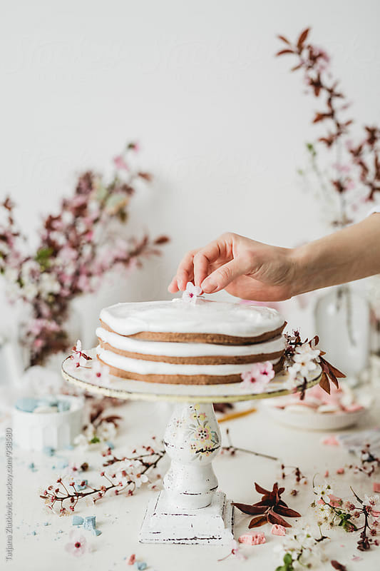 Flower on a spring cake by Tatjana Zlatkovic for Stocksy United