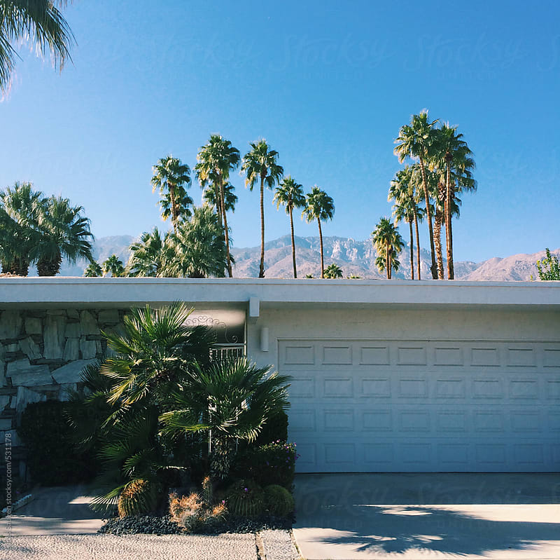 The front of a modern house in Palm Springs with palm trees popping out in the background. by Lucas Saugen for Stocksy United
