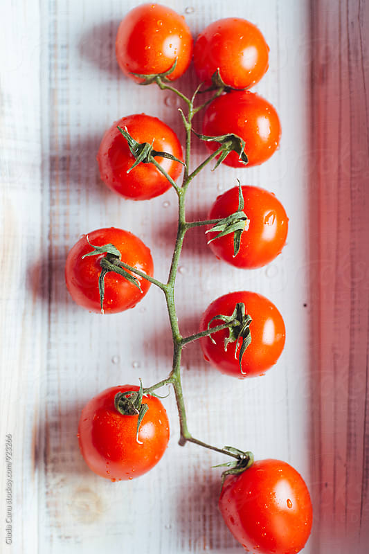 Tomatos by Giada Canu for Stocksy United