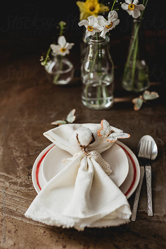 Spring place setting by Tatjana Zlatkovic for Stocksy United