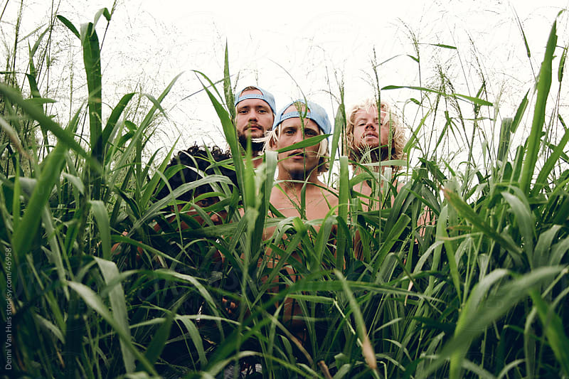 A group of young men hiding in the high green grass  by Denni Van Huis for Stocksy United