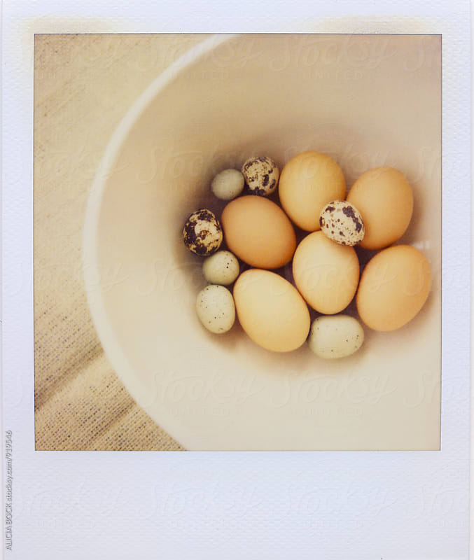 Polaroid Photograph Of A Variety Of Fresh Eggs by ALICIA BOCK for Stocksy United