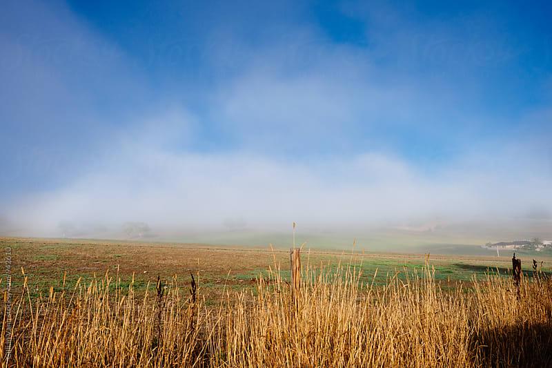 a rainbow of fog over farmland by Gillian Vann for Stocksy United