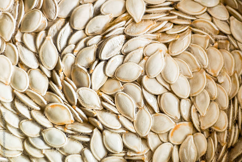 Pumpkin seeds ready to be roasted, rinsing off in a bowl of water by Cara Dolan for Stocksy United