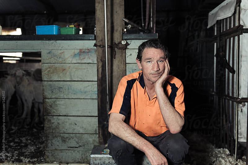 Shearer on a Break by Gary Radler Photography for Stocksy United