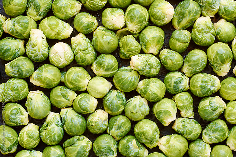 Brussels sprouts by Harald Walker for Stocksy United