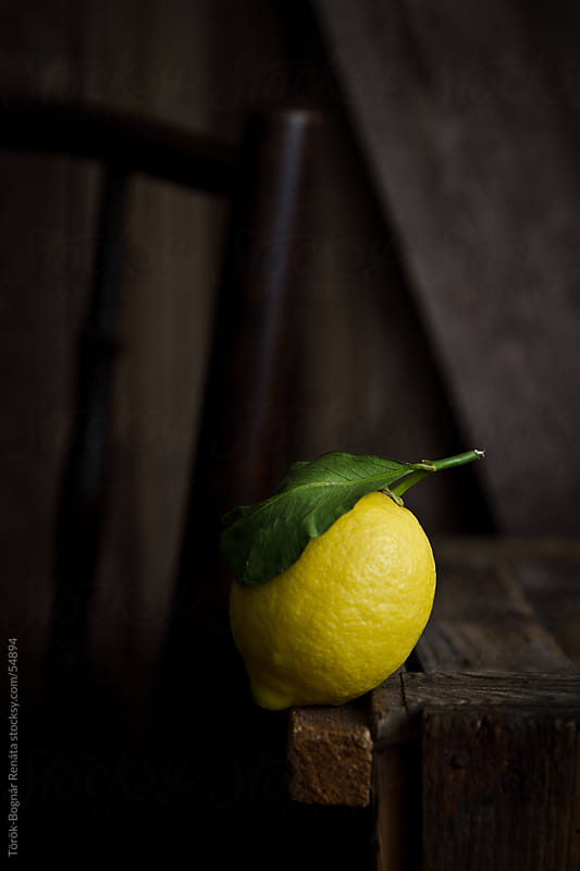 Lemon by Török-Bognár Renáta for Stocksy United