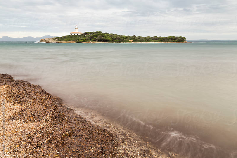 View of a small island with a lighthouse from a beach full of seaweed by Marilar Irastorza for Stocksy United