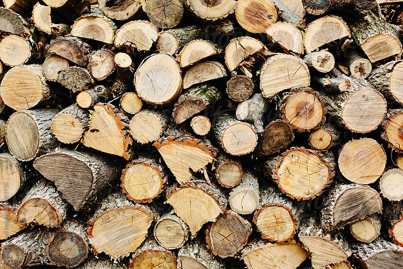 firewood stack mixture by Brian Powell for Stocksy United