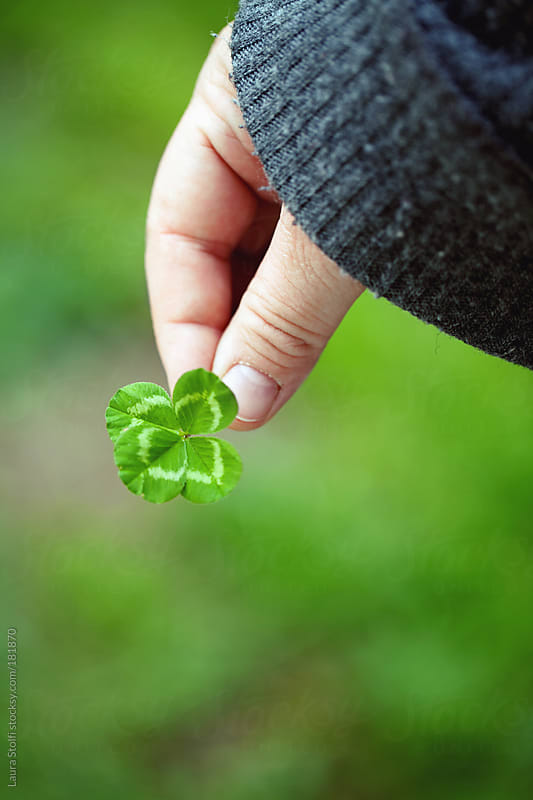 Clover in hand with blurred grass on background by Laura Stolfi for Stocksy United
