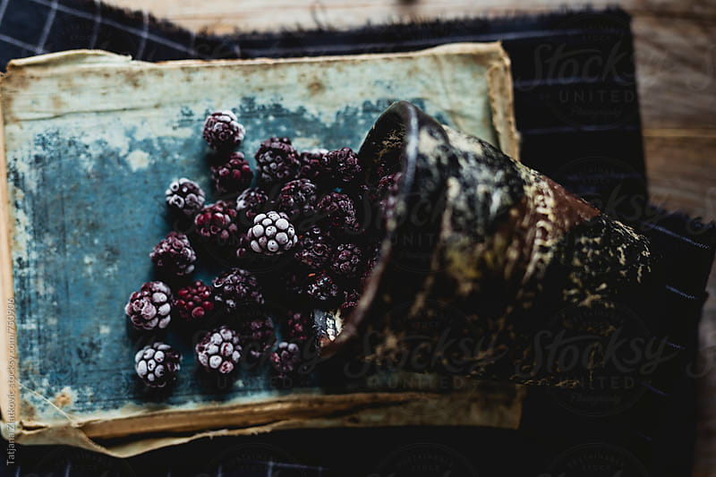 Wild blackberries by Tatjana Ristanic for Stocksy United